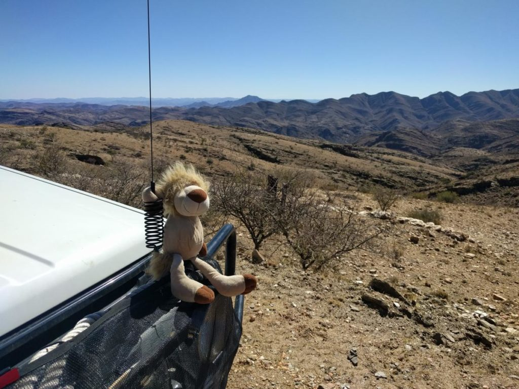 Leo Enjoying the Gamsberg Pass